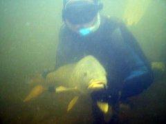 ru_diving_08.jpg